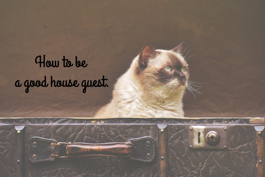 good-house-guest